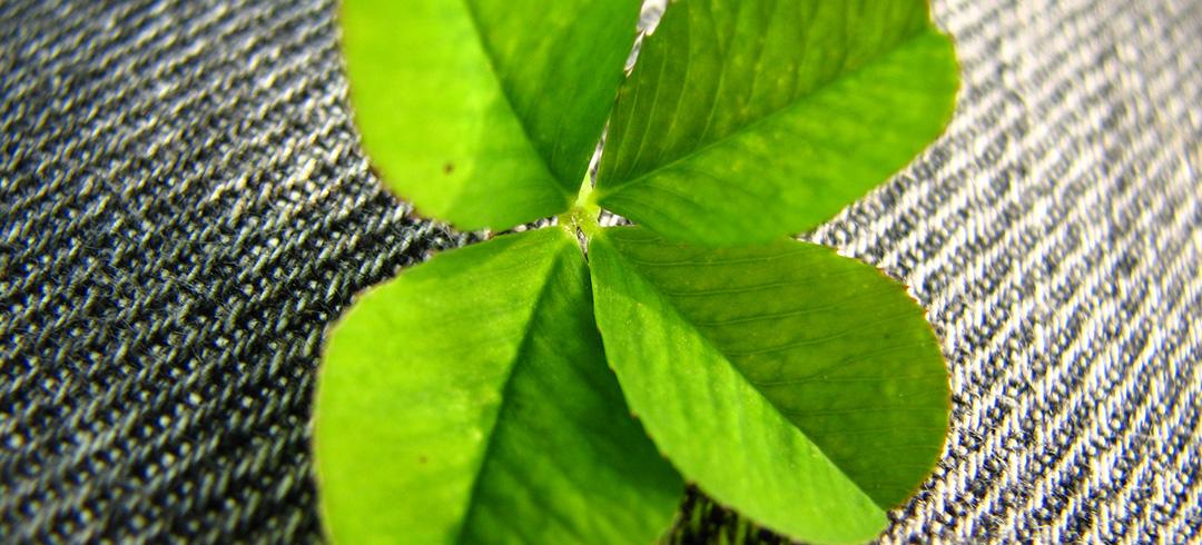 Jak uniknąć greenwashingu?